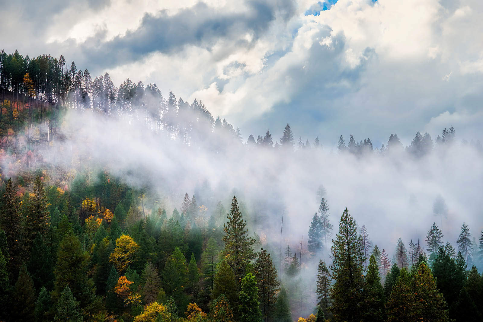 Feather River Canyon Storm