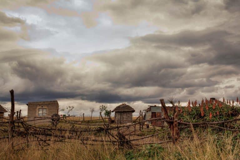 Small rural farm