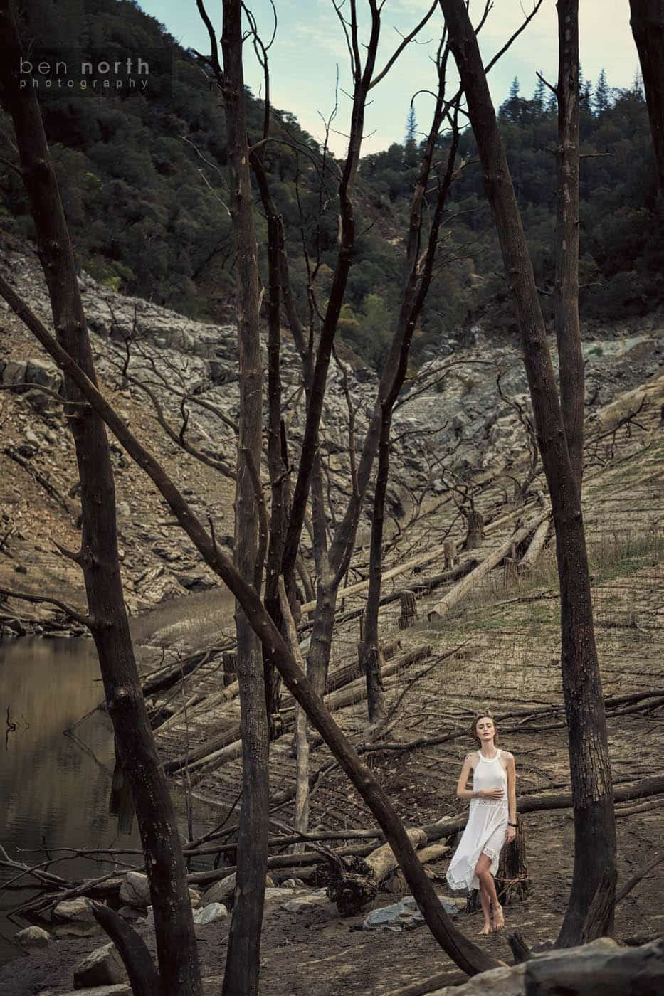 Fashion and lifestyle photography in a dead forest. The model is wearing a high neck Free People slip